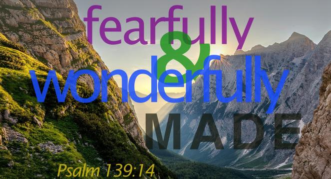 fearfully&wonderfullymade